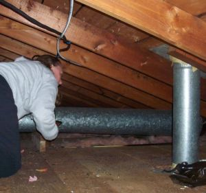 Cindy checking out the attic
