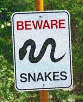 Beware+Snakes_web-1
