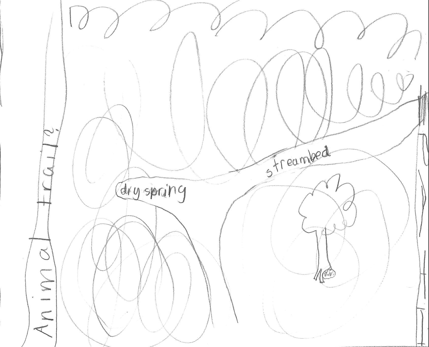 S6 L67 – Field Botany 2nd Project
