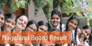NBSE Result 2016 - NBSE HSLC and HSSLC Result 2016