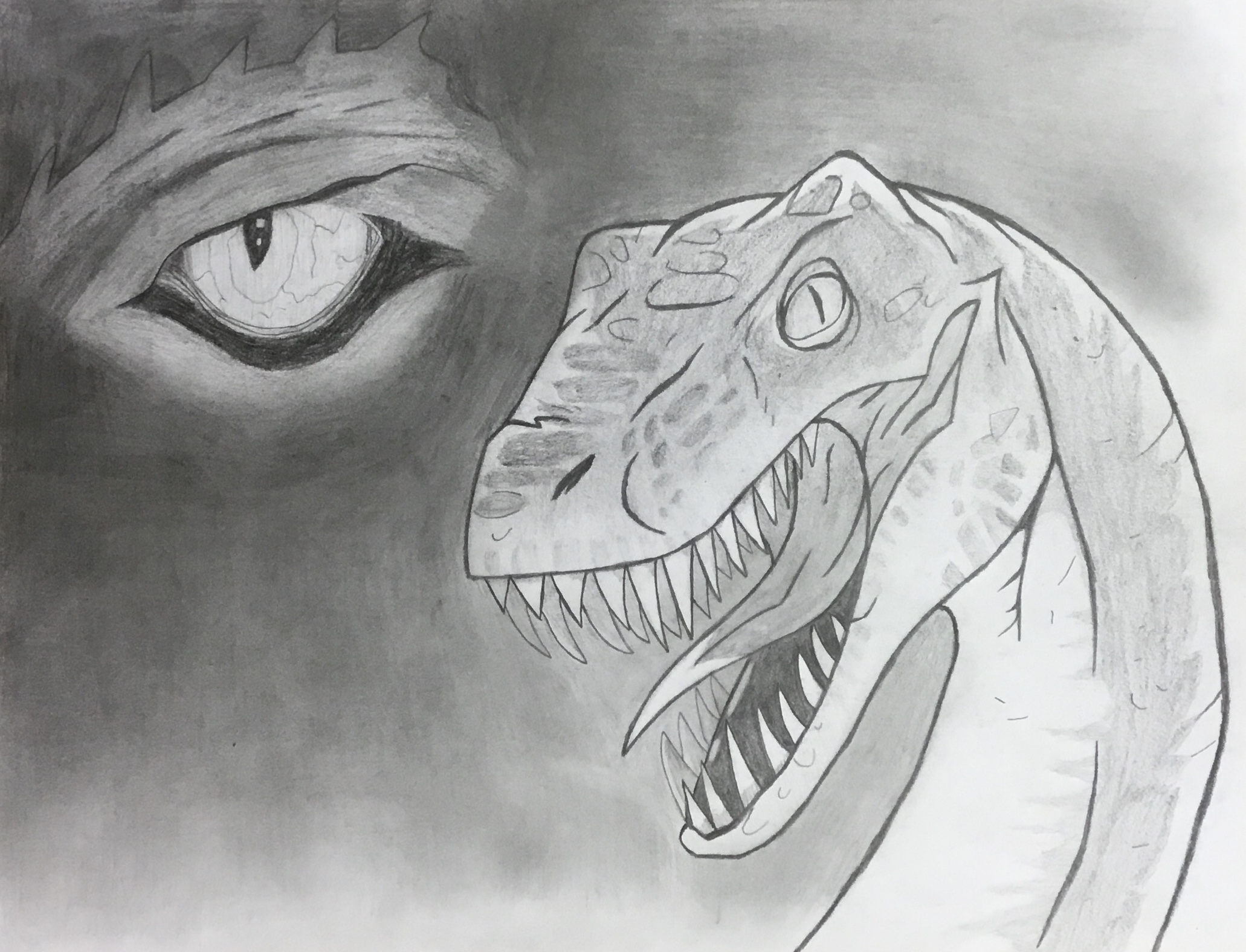 charcoal drawing of snake head