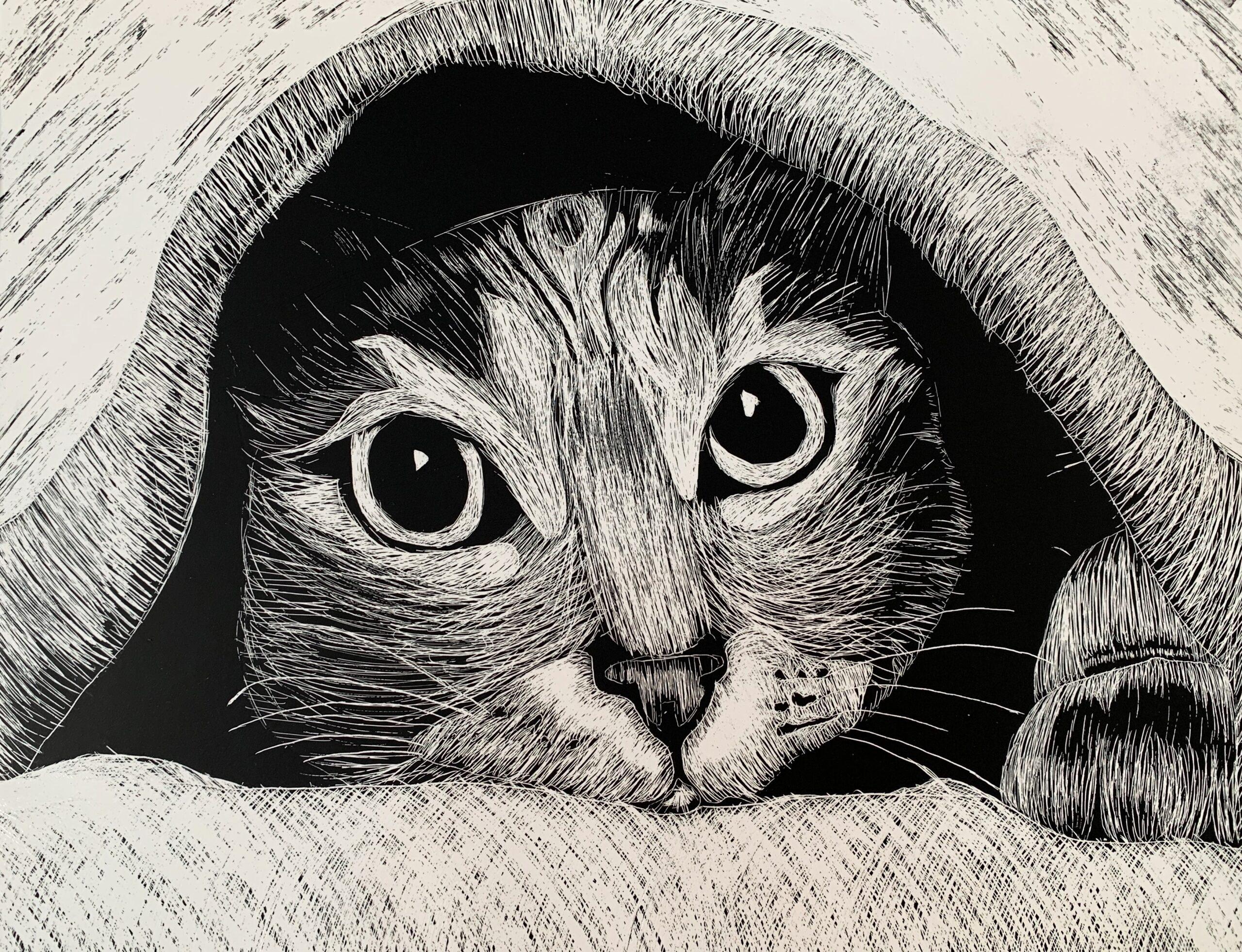 pen drawing of cat