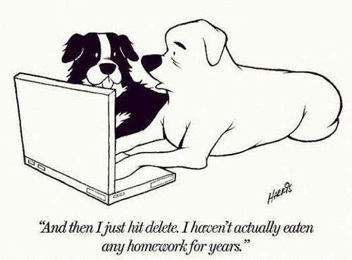Rickard, Melissa / Homework