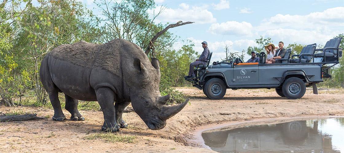 Silvan Safari in Limpopo