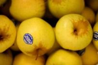 012 apples resized