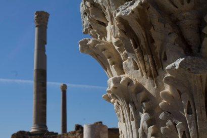 280 Antonine Baths in Carthage web