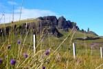 Die Insel Skye ist in vielen Programmen von Auto Rundreisen durch Schottland vertreten.