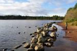 Loch Morlich, das im Rahmen unserer Familienreise Schottland besucht werden kann, bietet nicht nur Bademoeglichkeiten sondern auch zahlreiche Wanderungen an.