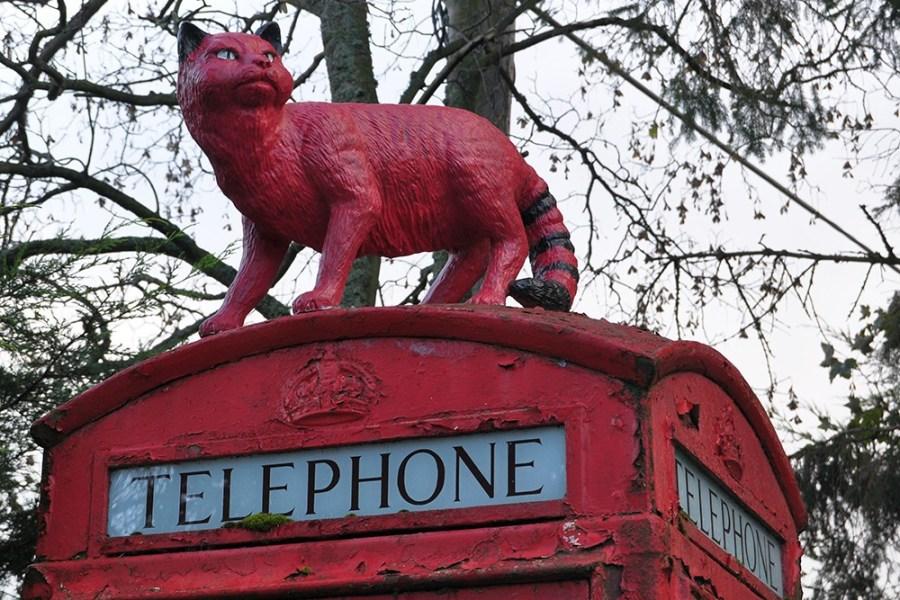 Ein schoener Rundwanderweg ist den Wildkatzen Schottlands gewidmet und kann auf unserer Familienreise erprobt werden.