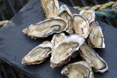 Auf einer Genussreise durch Schottland werden leckere Austern verköstigt.
