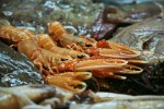 Fisch und Meeresfrüchte finden Sie auf dieser Genussreise durch Schottland zahlreich.