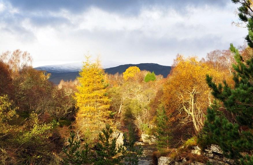 Eine Reise nach Schottland außerhalb der Saison lohnt sich.