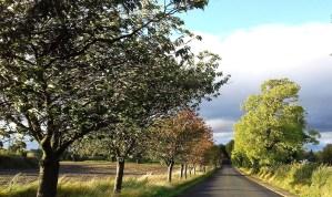Es lässt sich kein genauer Reisemonat für Schottland und eine Schottlandreise definieren, jede Jahreszeit in Schottland ist schön.