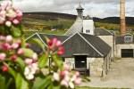 Auf dieser Whiskyreise durch Schottland kommen wir nicht nur an zahlreichen Highland Distilleries vorbei, sondern kehren dort auch ein.