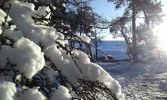 Eine Reise nach Schottland lohnt sich auch in Verbindung mit einem Winterurlaub.