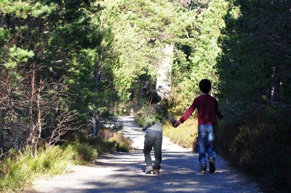 For allem mit Familien kann man im Cairngorm Nationalpark wunderbar wandern.