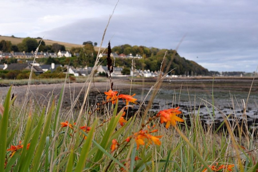 Mit unseren Touren durch Schottland kann jeder umweltfreundlich Reisen.