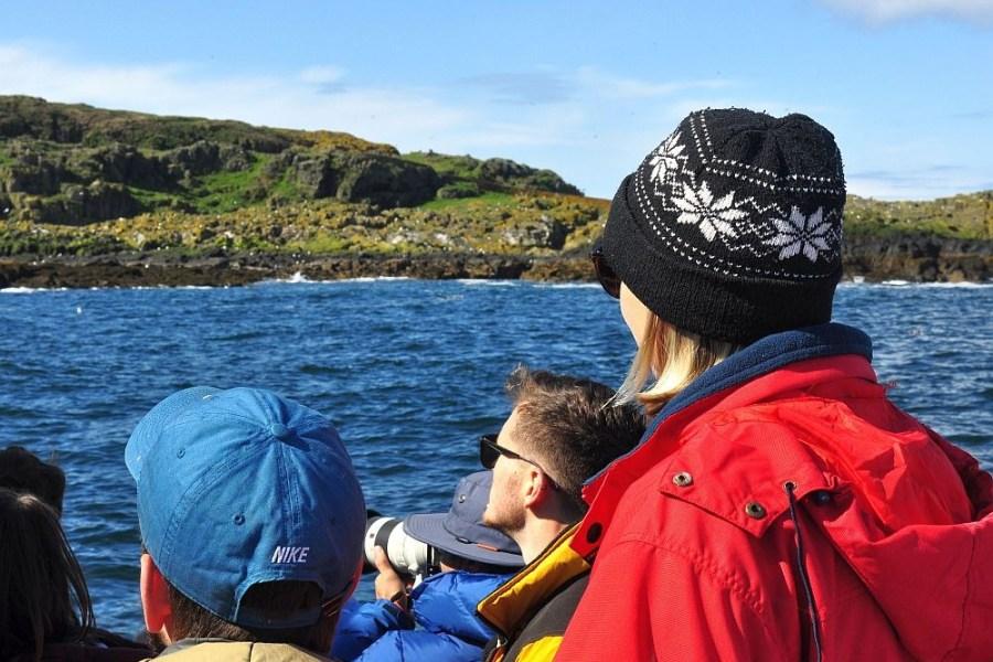 Ein Bootstrip auf die Isle of May ist unvergesslich.