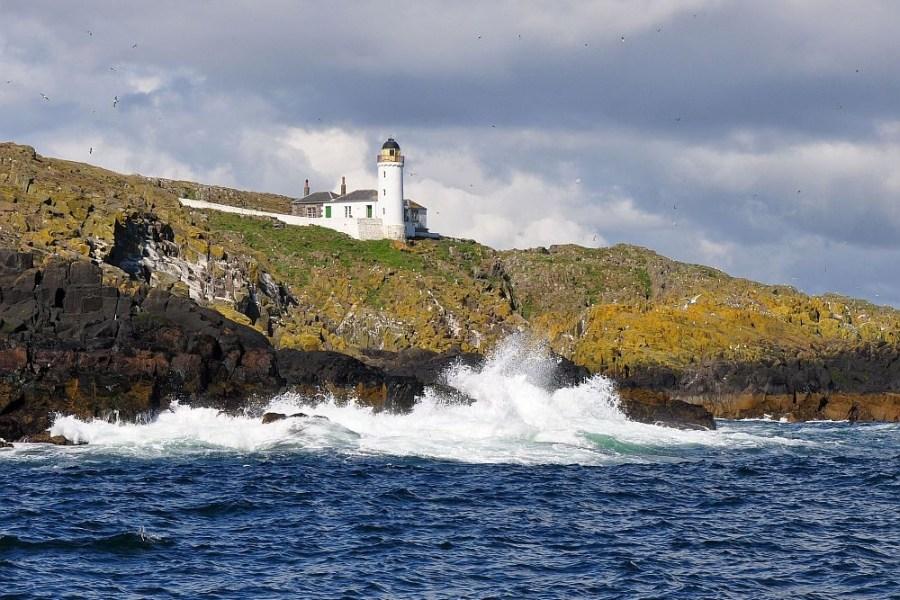 Bei dieser Reise durch Schottland dreht sich alles um Wildlife.