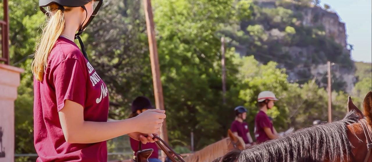 Schreiner Equestrian