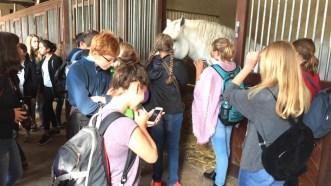 Bilder vom Austausch in Saint-Lô, September 2016.