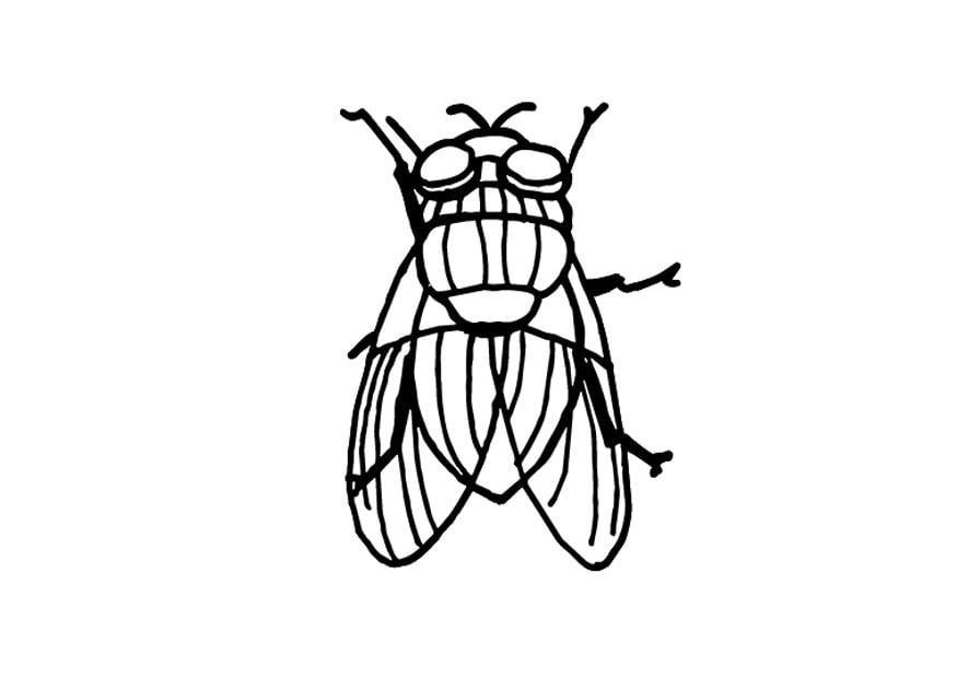 Fliege Basteln Servietten Falten » 15 Anleitungen Und