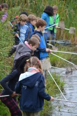 Keschern am Teich