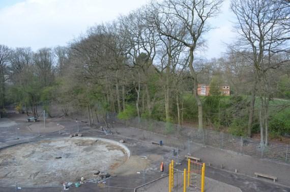 Im Park ist es schon grün! Auch bei uns dauert es nicht mehr lange!
