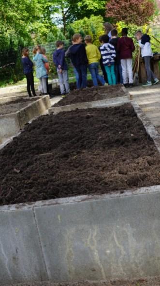 Hochbeete im Schulgarten