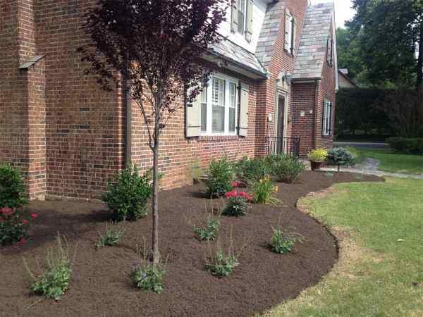 planting - schultz's landscaping