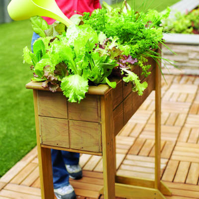 wooden plant beds and containers