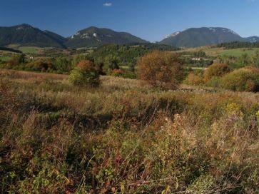 Chočské vrchy - Pravnáč, Čereňa, Prosečné