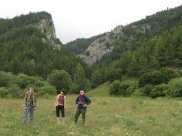 Vstup do Prosieckej doliny r.2006