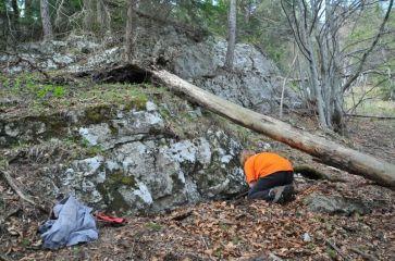 Túto vrstvu vápenca sme sledovali lesom až na lúku za Prosiekom