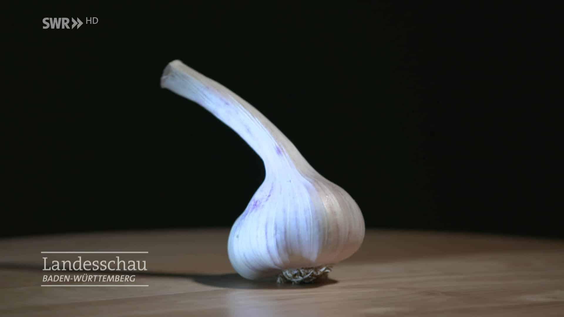 Knoblauch aber bitte ohne Geruch (SWR zu Black Garlic)