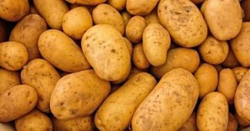 Kartoffelhalter