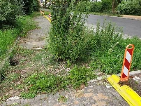 Schwerin: Schwierige Zustände in Mueß