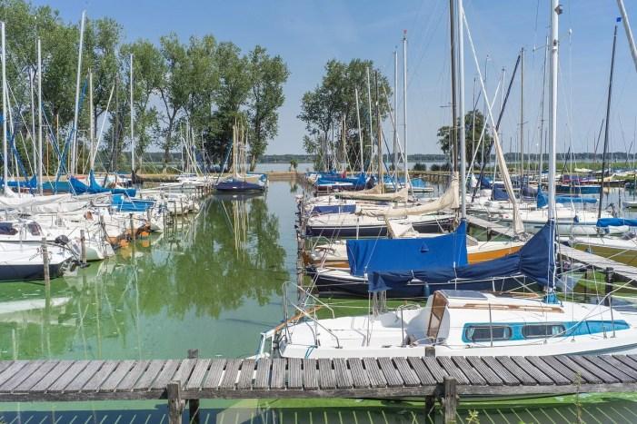 Schwerin: Erste Blaualgenwarnung für Gewässer