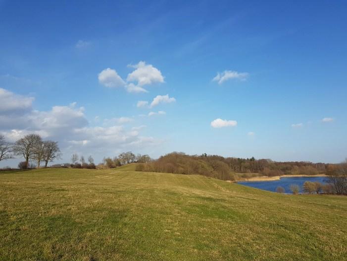 Schwerin: Schafweide am Ziegelaußensee ist vorerst tabu