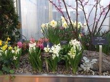 spring_at_RBG