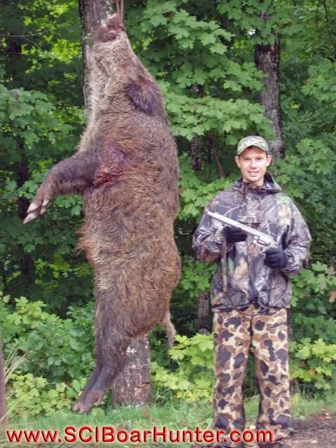 Russian Boar Hunting