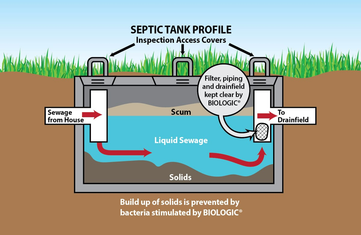 Rv Water Pump Diagram Clean Septic Systems Scicorp