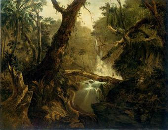 1820 painting of the Brazilian rainforest