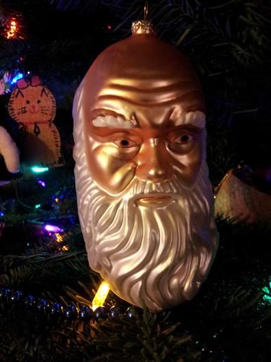 Darwin Christmas orniment