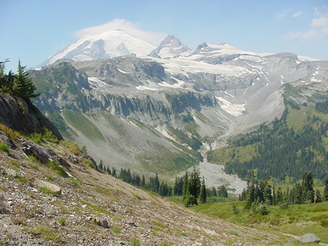 Ohanapecosh Valley on Mt. Rainier