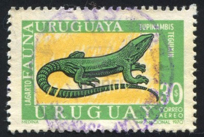 1970 stamp of tegu