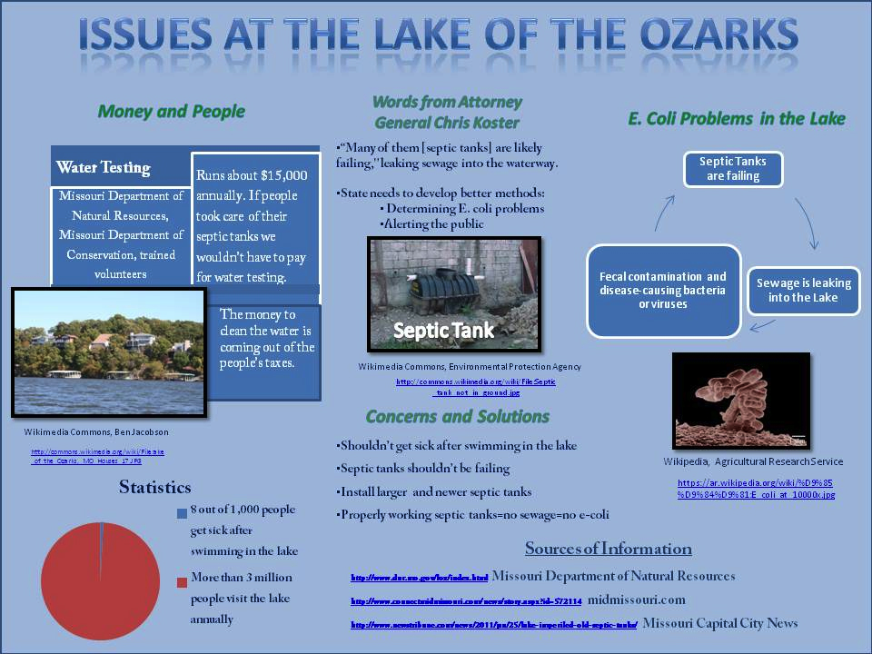 144554862-Issues-at-the-Lake-of-the-Ozarks-MO