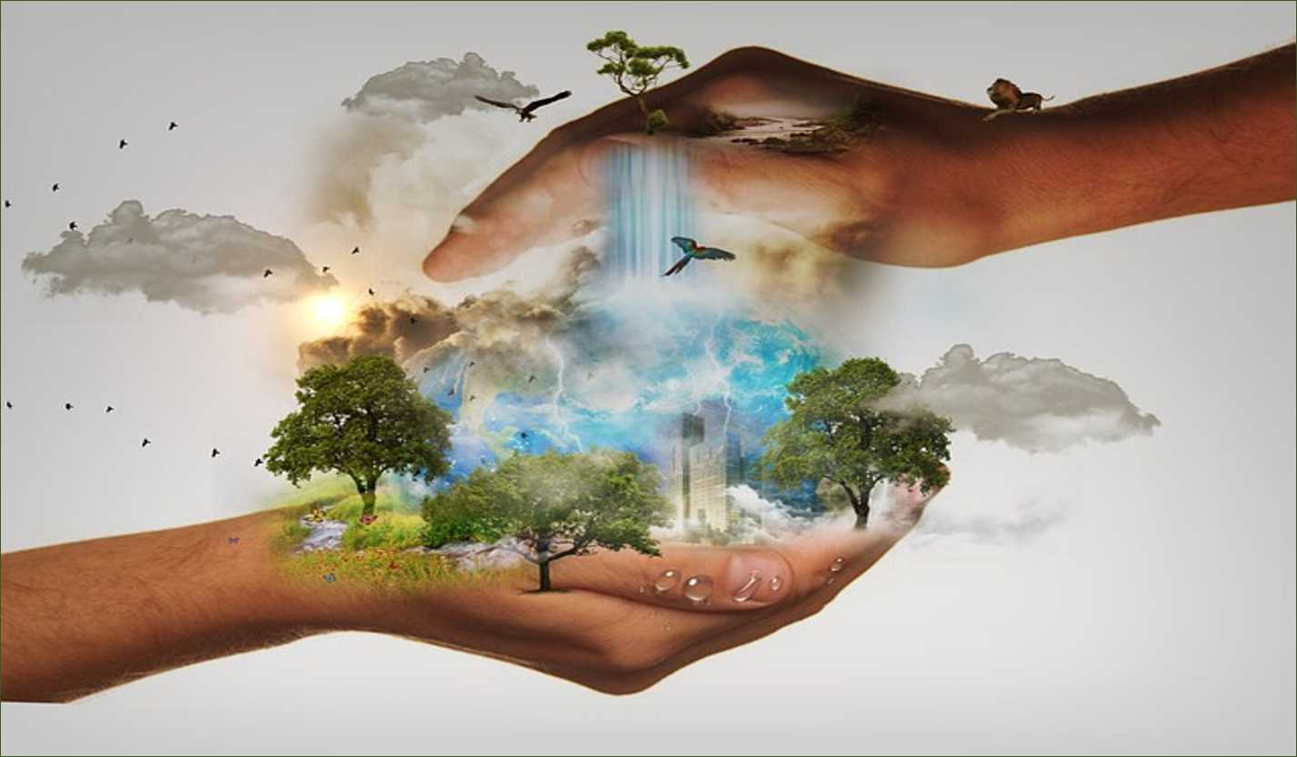 Natural Resources And Their Conservation For Class 7