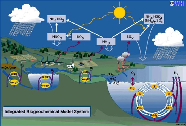 Biogeochemical Cycles In Nature Biogeochemical Cycles