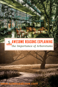 5 Awesome Reasons Explaining the Importance of Arboretums - http://sciencealcove.com/2015/04/five-reasons-arboretums-important/